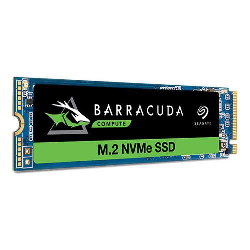 SEAGATE BRCD SSD PCIE 256GB ZP256CM30041